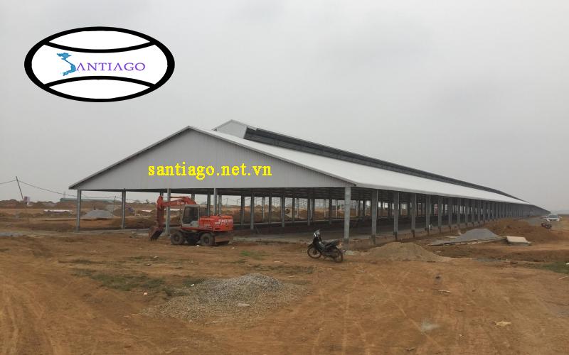 thi công tôn nhựa nông trại nuôi bò sữa