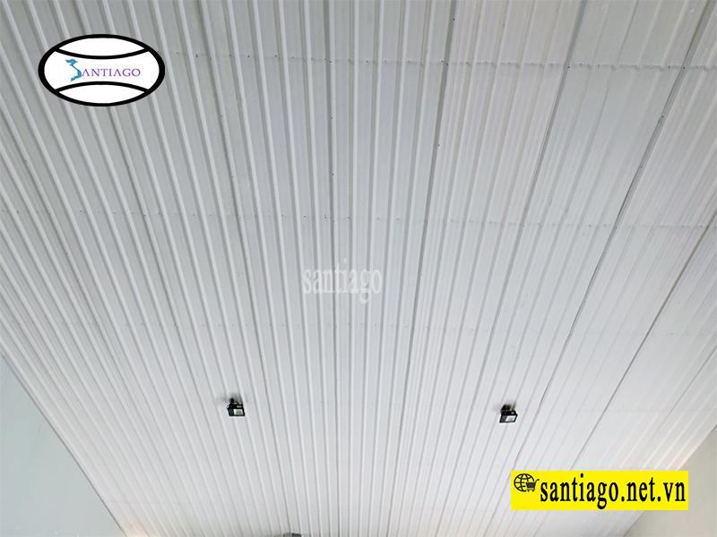 tôn nhựa trần nhà